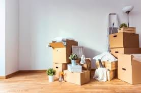 Everything You Need To Know About Tenant's Insurance